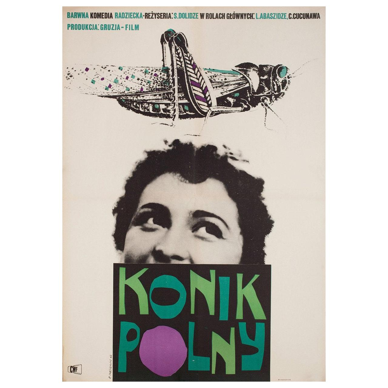The Dragonfly R1962 Polish A1 Film Poster