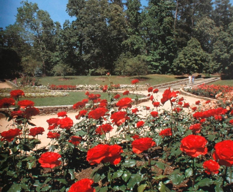The Sarah P. Duke Gardens, A Wonderful Wander, First Edition For Sale 4