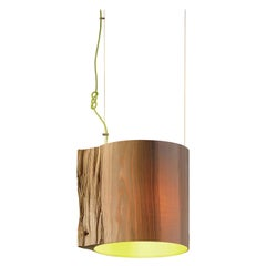 The Wise One Pendant Light / Green