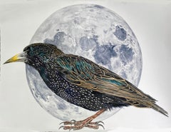 """""""Moon and Stars"""" Contemporary Surrealist painting (starling bird with moon)"""