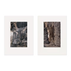 Grotesques, Pair of Photogravures, Conceptual Art, Contemporary Photography