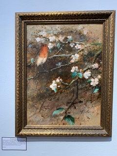Victorian 19th century English Robin Bird on a Apple blossom branch
