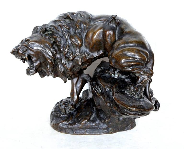 Thomas Francois-Cartier Figurative Sculpture - Snarling Lion