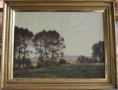 Professor Thomas Sheard, Impressionist study of summer skies and woodland