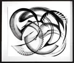 Pagiophyllum - Large Framed Contemporary Black and White Artwork