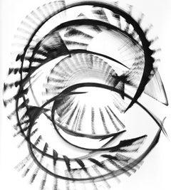 Xi Cygni - Black and White Painting