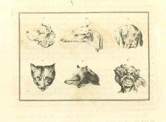Animals Muzzles - Original Etching by Thomas Holloway - 1810