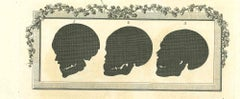 The Physiognomy-Skulls' Silhouettes - Original Etching by Thomas Holloway - 1810