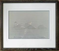 Winter Mist - Trumpeter Swans