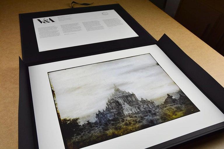 THOMAS RUFF: Tripe 08 - 21st Century, Modern, Landscape Photography For Sale 2