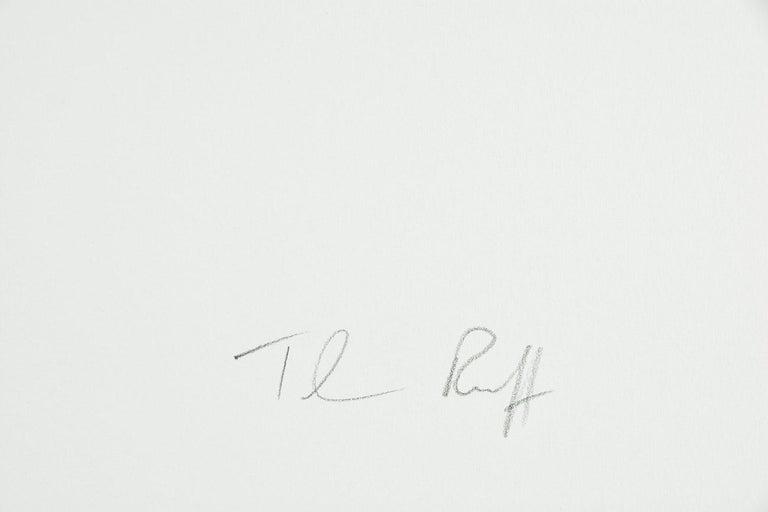 THOMAS RUFF: Tripe 08 - 21st Century, Modern, Landscape Photography For Sale 5