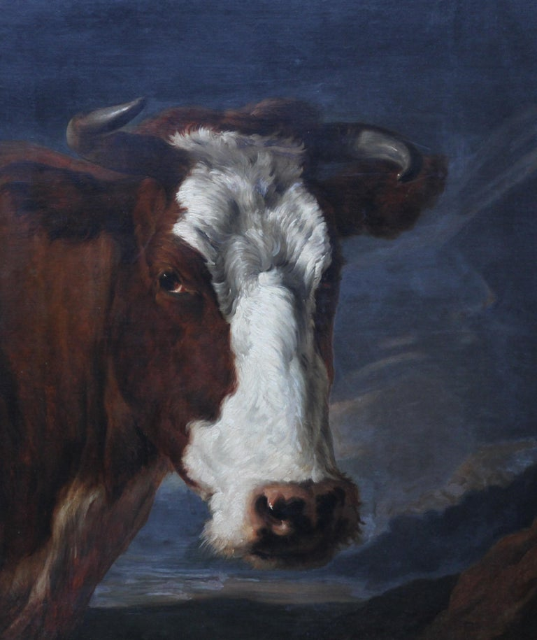 Head of a Shorthorn Cow Portrait - British Victorian art animal oil painting - Realist Painting by Thomas Sidney Cooper RA