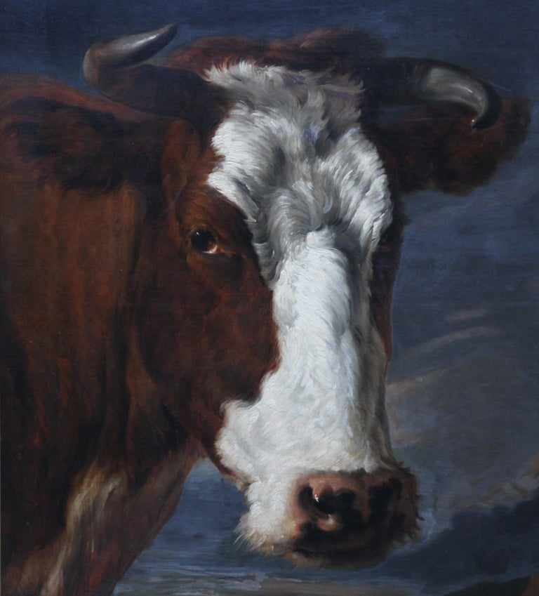 Head of a Shorthorn Cow Portrait - British Victorian art animal oil painting - Black Portrait Painting by Thomas Sidney Cooper RA