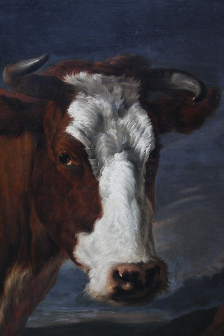 This stunning portrait oil painting of a cow with landscape beyond is by famous British Victorian animal artist Thomas Sidney Cooper. Painted circa 1832, this handsome beast is a red Shorthorn cow. The Shorthorn breed of cattle originated in the