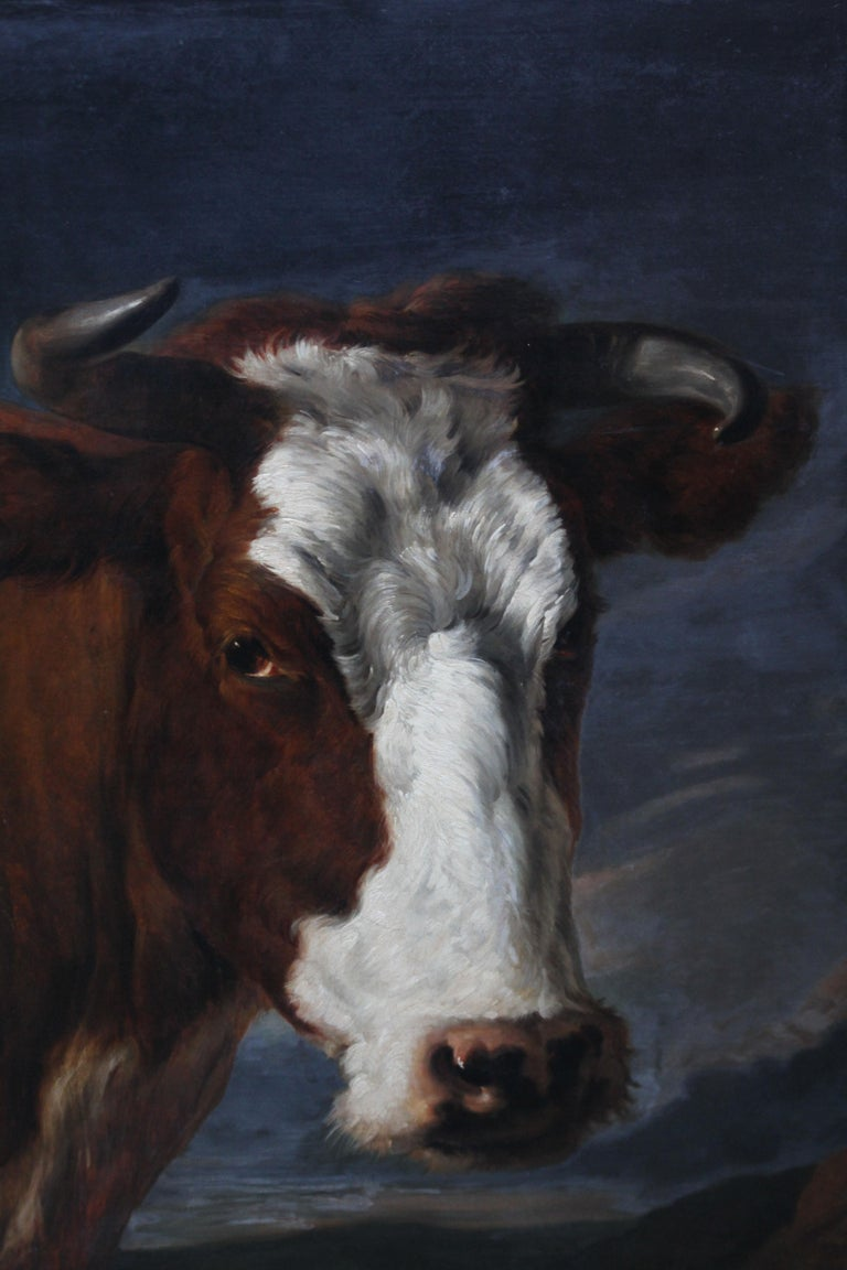 Head of a Shorthorn Cow Portrait - British Victorian art animal oil painting For Sale 1
