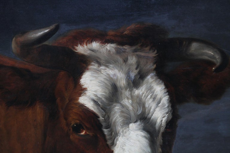 Head of a Shorthorn Cow Portrait - British Victorian art animal oil painting For Sale 3