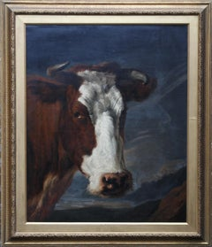 Head of a Shorthorn Cow Portrait - British Victorian art animal oil painting
