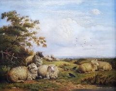 Landscape with Resting Sheep