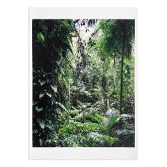 Sao Francisco de Xavier (from Paradies), Landscape Photography, Contemporary Art