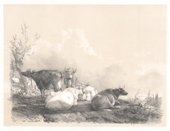 On the Stour, tinted lithograph of cattle, by Thomas Sydney Cooper, 1837