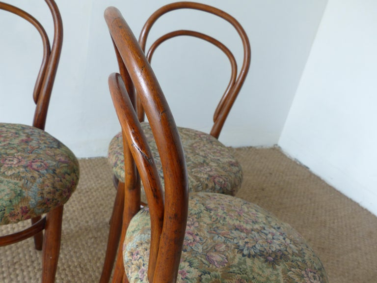 Thonet Chairs, Antique, Late 19th Century Model 14 For Sale 7