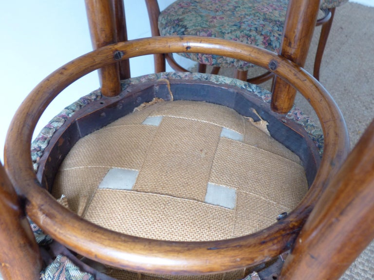 Bentwood Thonet Chairs, Antique, Late 19th Century Model 14 For Sale