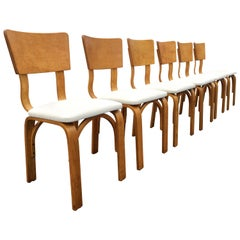 Thonet Dining Chairs, Bentwood and Fabric, Excellent Condition, Mid Century