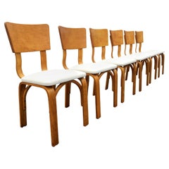 Thonet Dining Chairs, Bentwood and Fabric, Excellent Condition, Midcentury