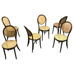 Thonet Dining Chairs ZPM Radomsko , 1950s, Set of 6