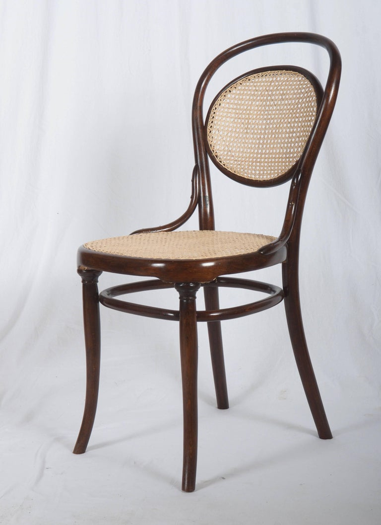 Vienna Secession Thonet Nr. 11 Chair For Sale