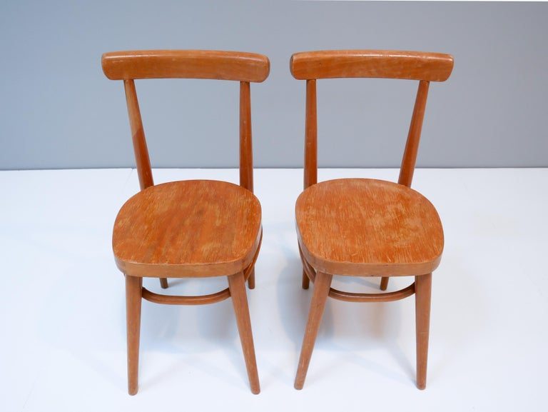 Birch Thonet Style Children's Bentwood Chairs, 1950s, Sweden For Sale