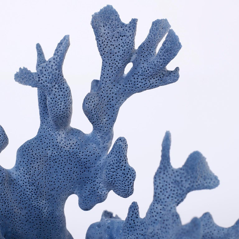 Three Blue Coral Specimens on Lucite For Sale 1