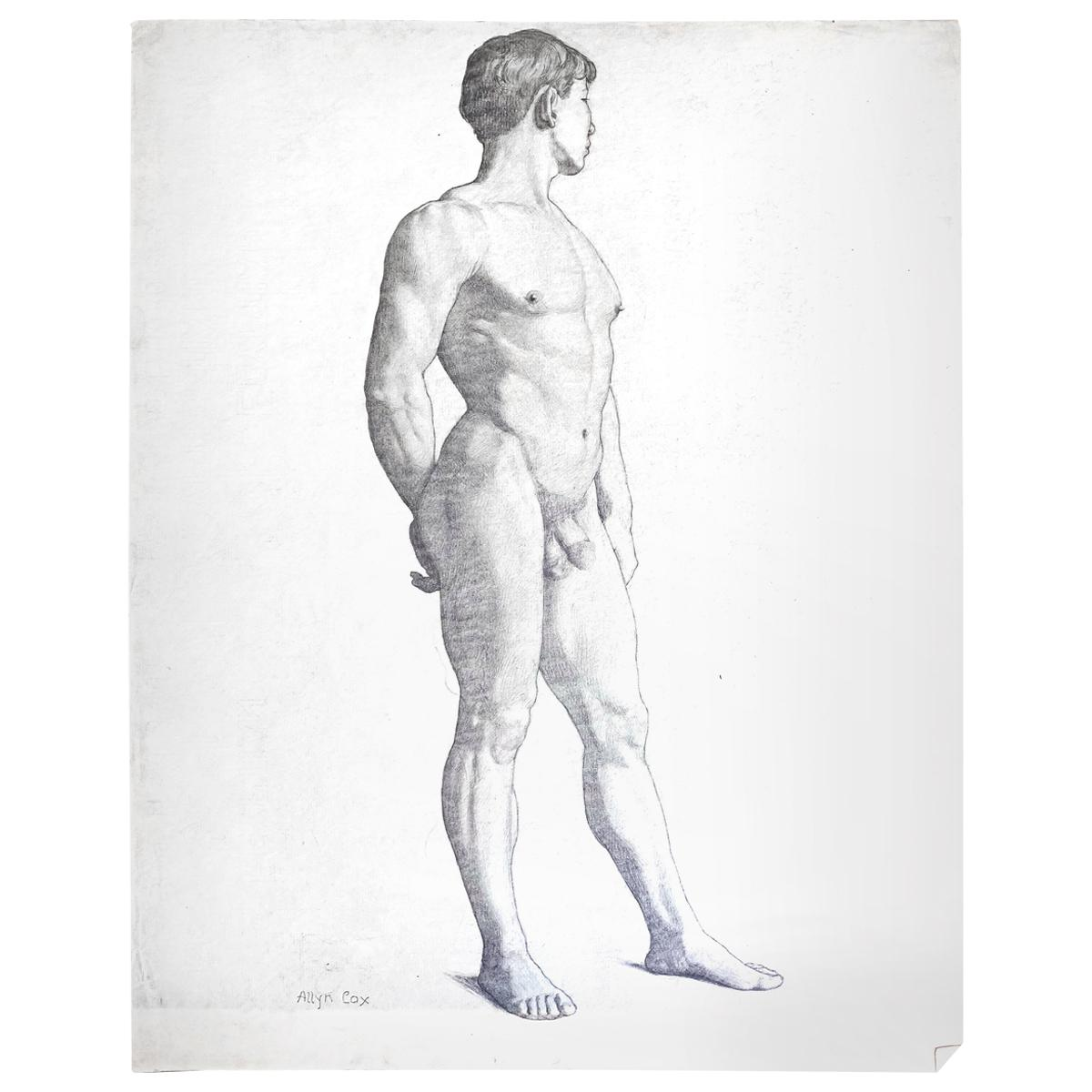 """""""Three-Quarters Standing Male Nude,"""" Drawing by Allyn Cox, US Capitol Muralist"""