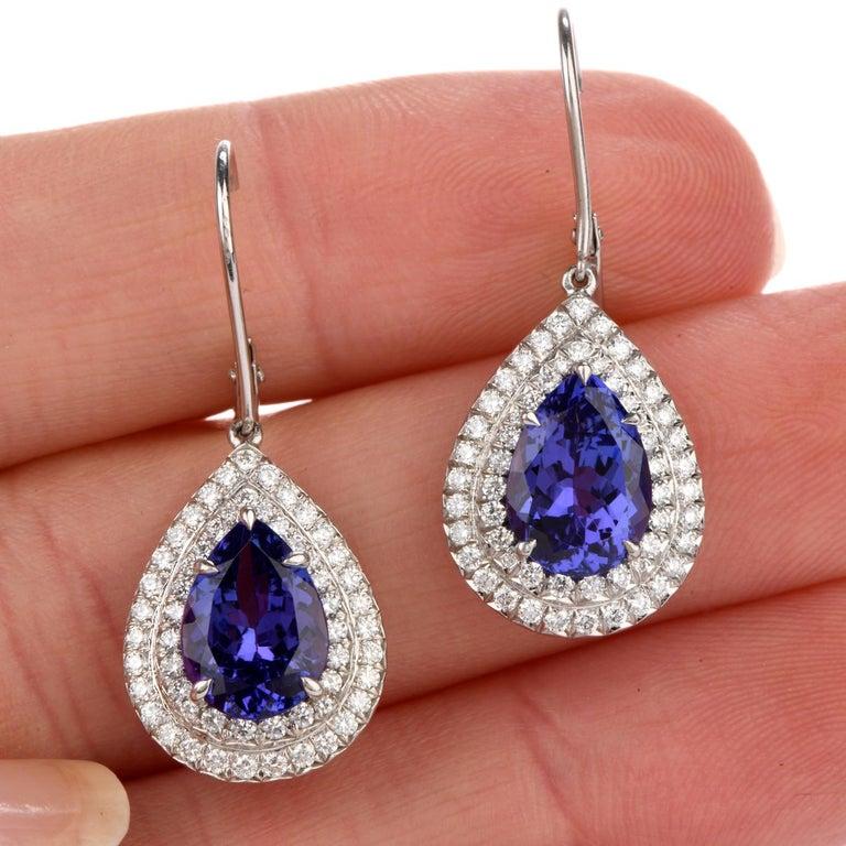 Women's Tiffany & Co. Soleste Tanzanite Earrings in Platinum Dangle Double Halo For Sale
