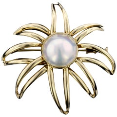 Tiffany & Co. 18 Karat Yellow Gold Mabe Pearl Fireworks Brooch