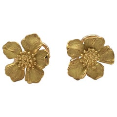 Tiffany & Co. Gold Dogwood Flower Earrings