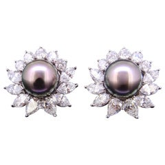 Tiffany & Co., Important Pair of Platinum, Black Pearl and Diamond Earrings