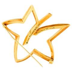 Tiffany & Co. Leaf Star 18 Karat Brooch
