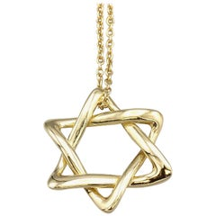 Tiffany & Co. Peretti Large 18 Karat Gold David Star Chain Necklace