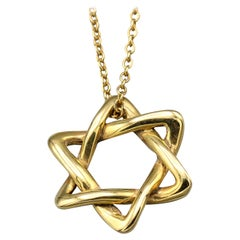 Tiffany & Co. Peretti Small 18 Karat Gold David Star Chain Necklace