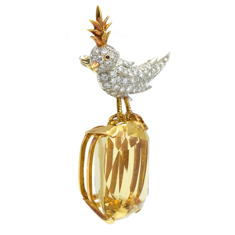 Tiffany Schlumberger   Bird on a Rock Pin   18k White And Yellow Gold. The bird is set with 73 round brilliant cut diamonds with an approximate weight of 3.0carats,   1 round ruby with an approximate weight of 0.02ct. The bird is placed sitting on