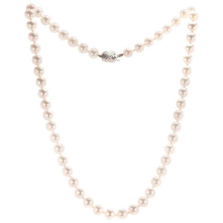 1f8f16504d2ac0 Tiffany & Co. Signature Akoya Pearl Necklace, 18 Karat White Gold For Sale