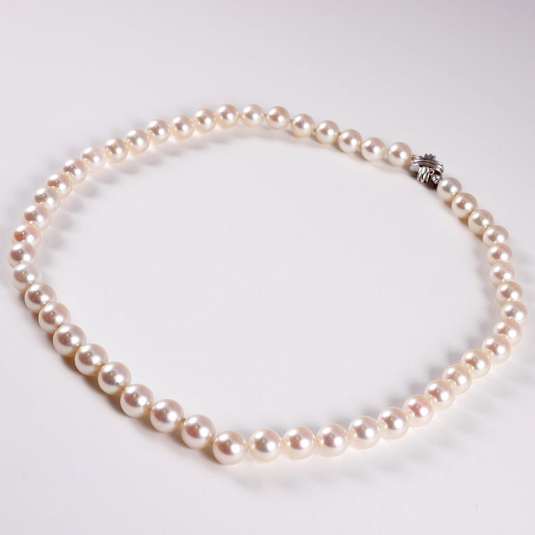 Tiffany & Co. Strand of Pearls In Excellent Condition For Sale In Dallas, TX
