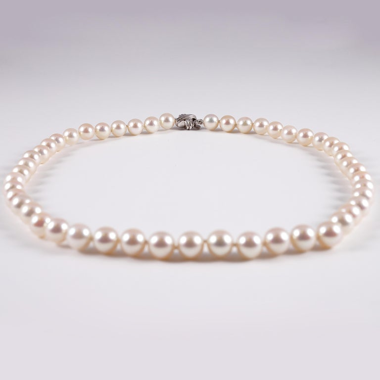 Women's or Men's Tiffany & Co. Strand of Pearls For Sale