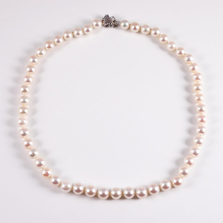 Tiffany & Co. Strand of Pearls For Sale 1