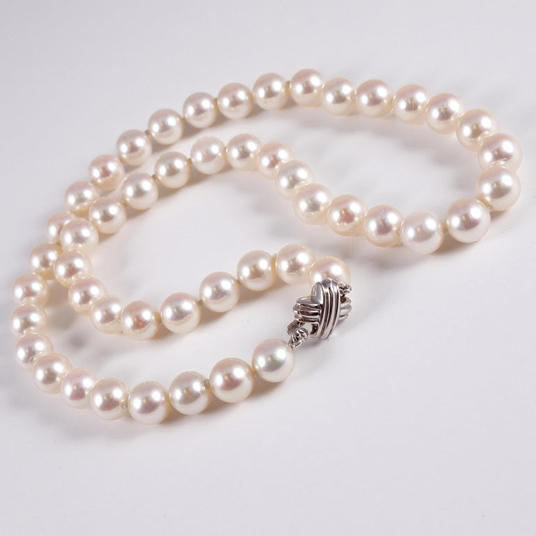 Tiffany & Co. Strand of Pearls For Sale 2