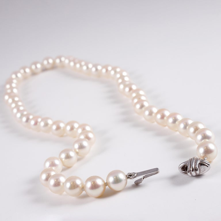 Tiffany & Co. Strand of Pearls For Sale 3