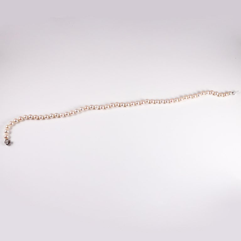 Tiffany & Co. Strand of Pearls For Sale 4