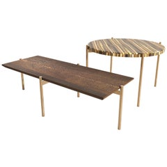 Tiger Eye´s Precious Stone and Wood Tom & Tom Table Handsculpted by ELEMENT&CO
