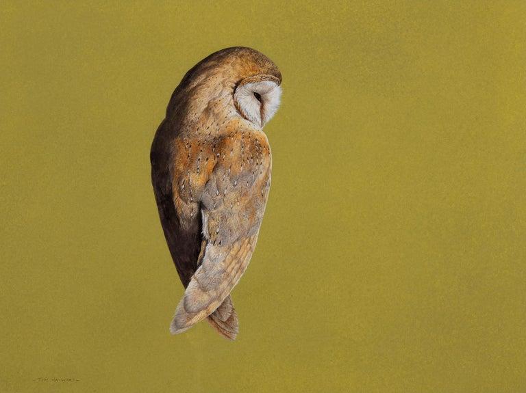 Tim Hayward Animal Painting - Barn Owl - Chartreuse - Contemporary - Animal painting